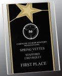 Gold Star Acrylic Stand-Up Star Acrylic Awards